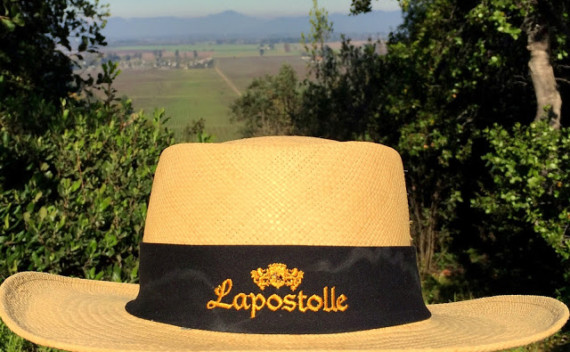 Lapostolle Residence – conforto, vinho e gastronomia em Apalta