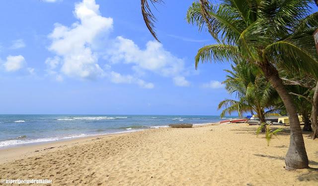 Litoral Norte da Bahia – o que fazer, quais praias e onde ficar?