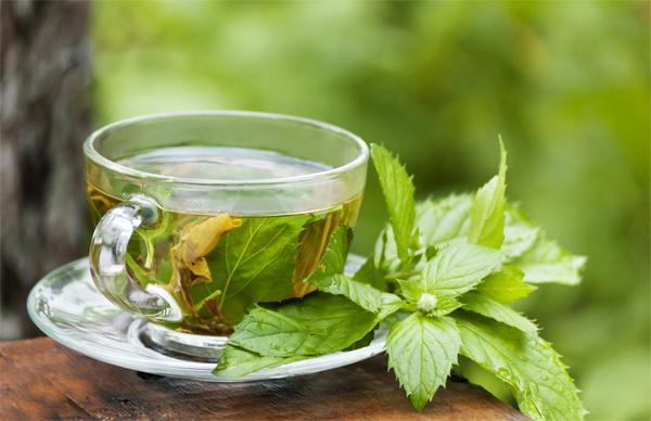 Escolha certa: É melhor chá de saquinho, pronto ou a granel?