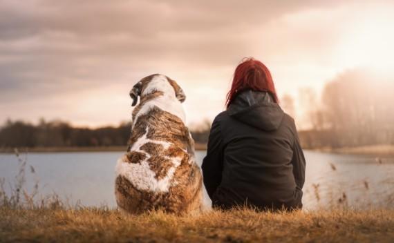 A importância das amizades