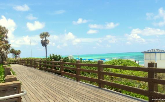 O que fazer em Miami pela primeira vez? Dica de lugares pra ir, onde ficar e comer!
