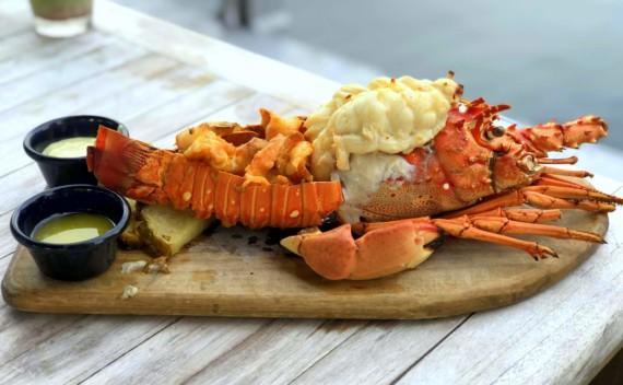 Restaurantes em Key West? Confira nossas deliciosas dicas!